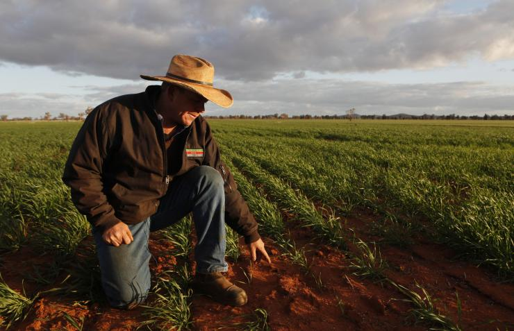 Australian Farmers Are Paying Too Much For Electricity