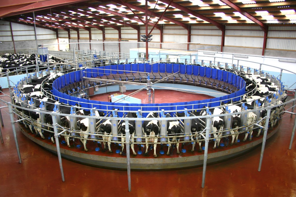 The Dairy Sector Can Expect Higher Energy Prices