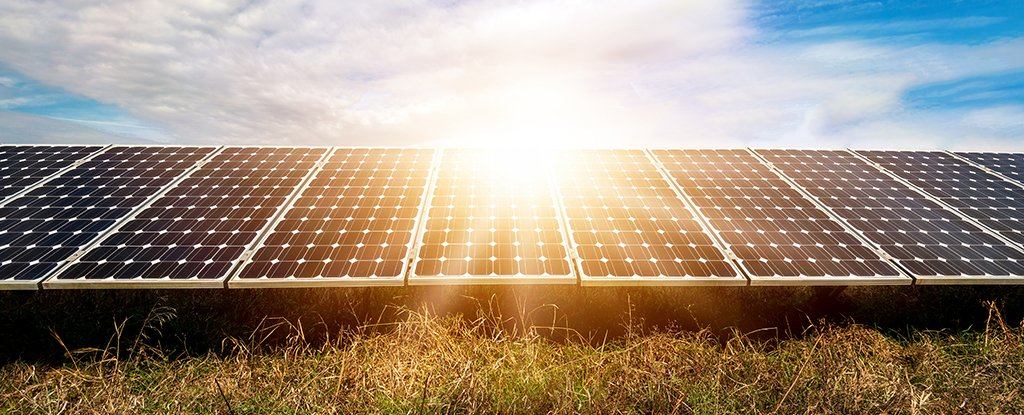 Rooftop Solar Systems and Utility-Scale Solar Farms: How Do They Differ?